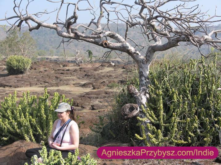 Ajanta-medytacja