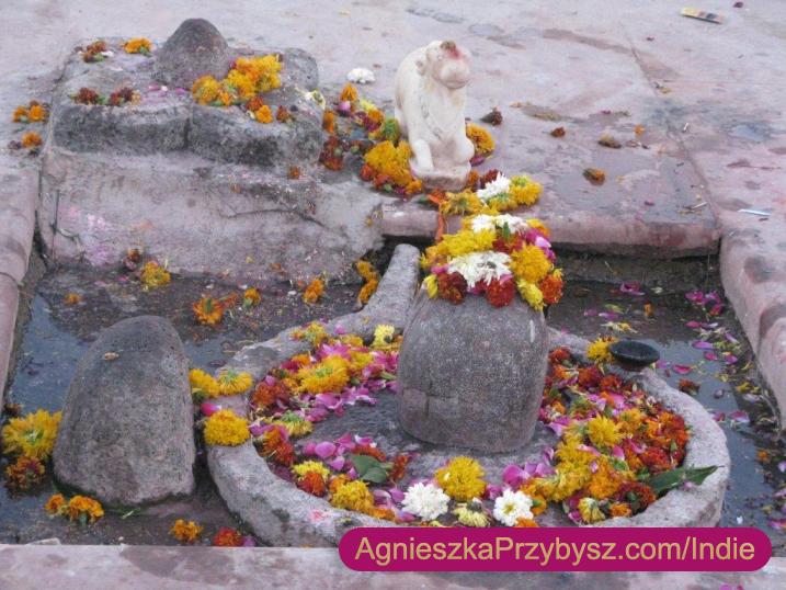 Ujjain-swieta-rzeka-Indie